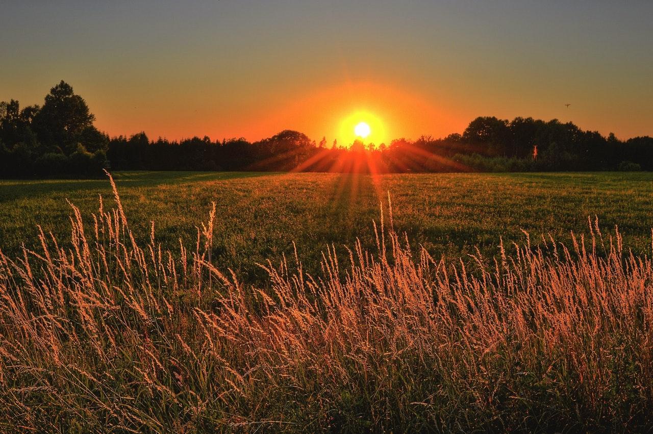 Gülümsemek ve günaydın demek, ay sonunu getirmemi nasıl sağlar?